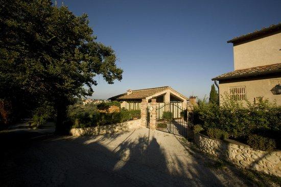 Podere Sant'Elena: ingresso check in