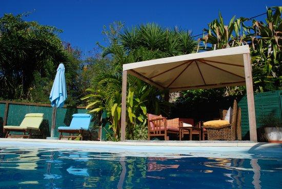 The Rose of Brazil: La piscine