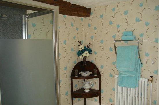 Newlands Hall Farmhouse B&B: bathroom