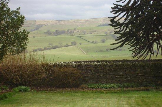 Newlands Hall Farmhouse B&B: lovely view