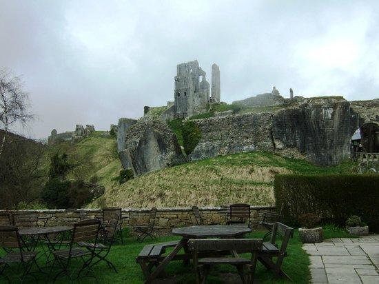 National Trust Tea Room: Tea Room garden overlooking the castle