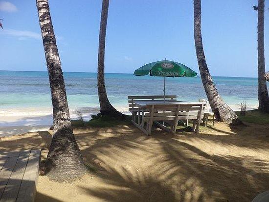 Los Pinos : spiaggia las terrenas