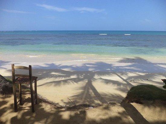 Los Pinos : fronte spiaggia