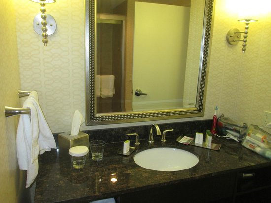 Doubletree by Hilton Detroit Downtown - Fort Shelby: bathroom