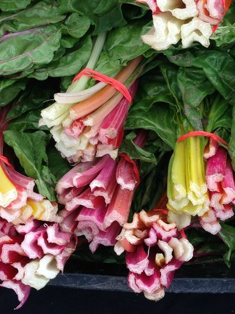 New Braunfels: colorful locally grown chard