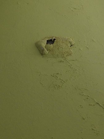 The Times Hotel: Mold in room