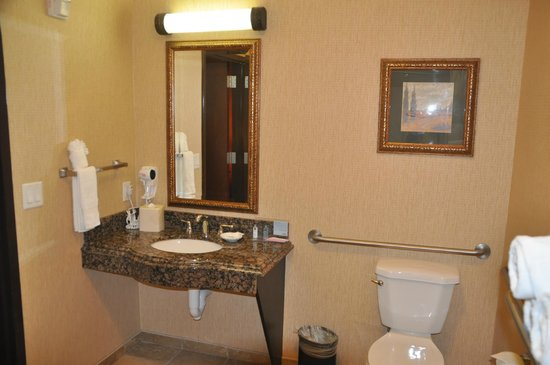 Hampton Inn and Suites Boerne : Bathroom