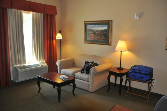 Hampton Inn and Suites Boerne: Part of our room sitting area