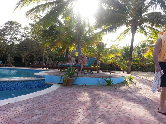 Hamanasi Adventure and Dive Resort: pool side