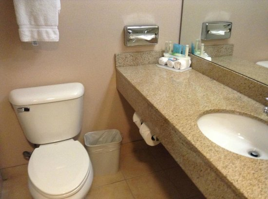 Holiday Inn Express & Suites : Lots of counter space