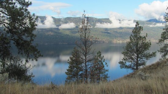 A & S Lakeview Bed & Breakfast: View from our walk looking at Okanagan Lake