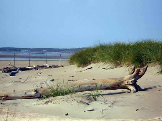 Best Western Plus Brunswick Bath: Popham Beach State Park