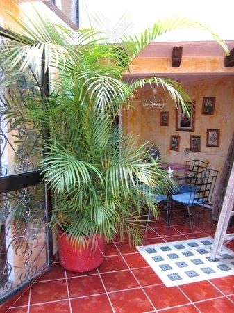 Casa Mexicana: terraza 2