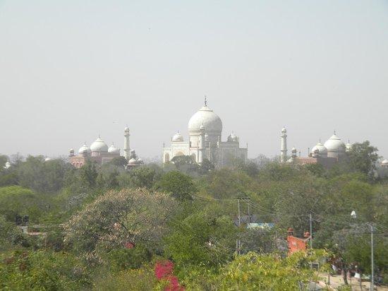 Hotel Taj Plaza: Taj Mahal from rooftop terace