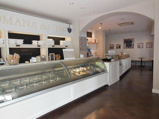 Gelateria La Romana - Urbino: gelateria la Romana, vetrine gelati