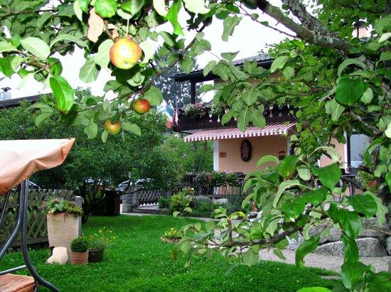 Gastehaus Otto Huber: Lovely Garden