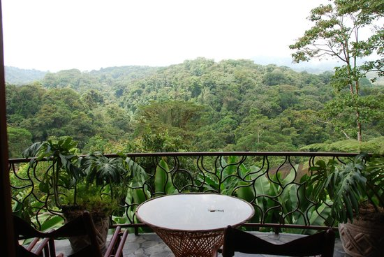 The Peace Lodge - our balcony view - Incredible!