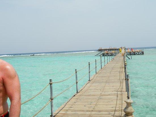 Royal Albatros Moderna Sharm el-Sheikh: The boardwalk to 'Nemo' land!