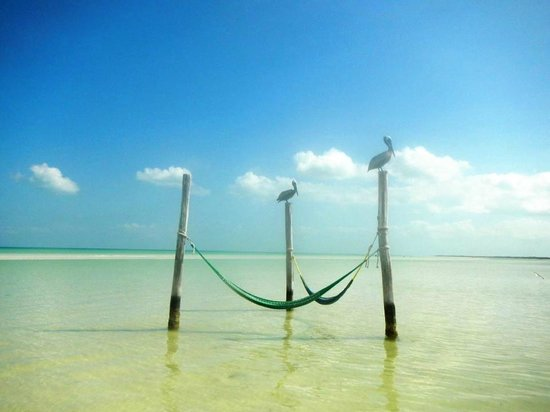 Villas Flamingos: Holbox