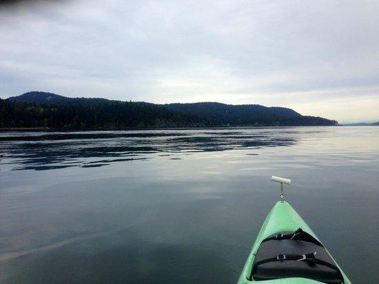 Kayaking at Spring Bay Inn