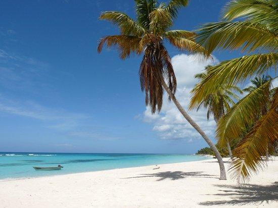 Punta Cana, Republik Dominika: Plage paradisiaque