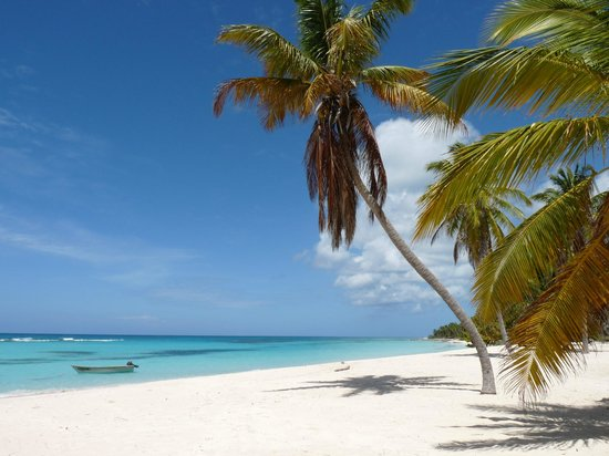 Punta Cana, Dominikanska Republiken: Plage paradisiaque