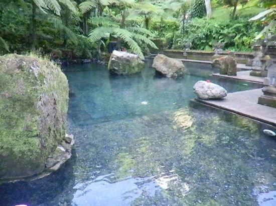 The Royal Pita Maha: Holy Water Pool