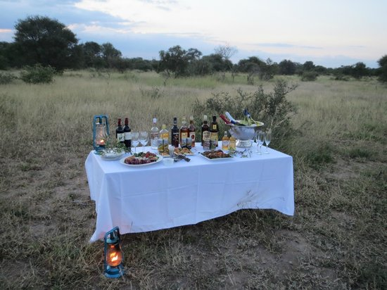nThambo Tree Camp: sundowners were provided on each drive