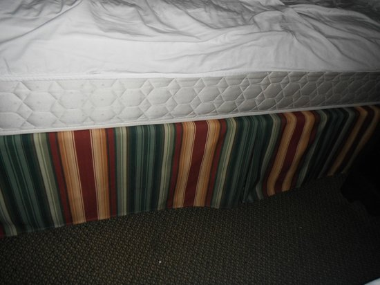 La Quinta Inn & Suites Tampa North I-75: Sheets don't fit.