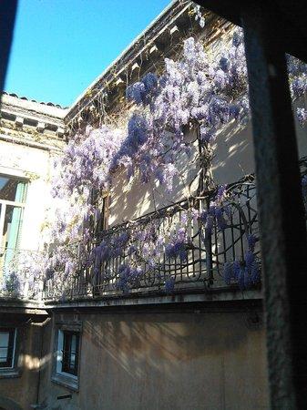 Hotel Biscari : Terrace