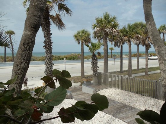 Sabal Palms Inn: Looking across Gulf Way to the beach