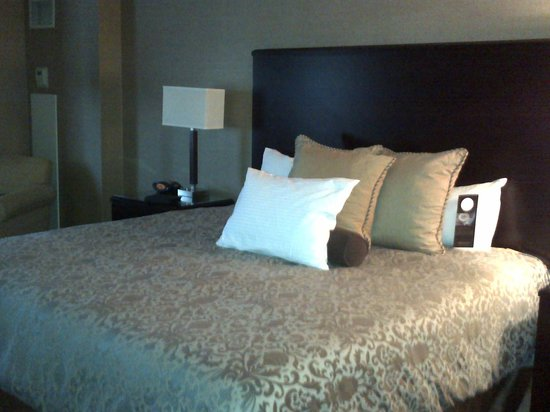 Omni Dallas Hotel at Park West: King Suite