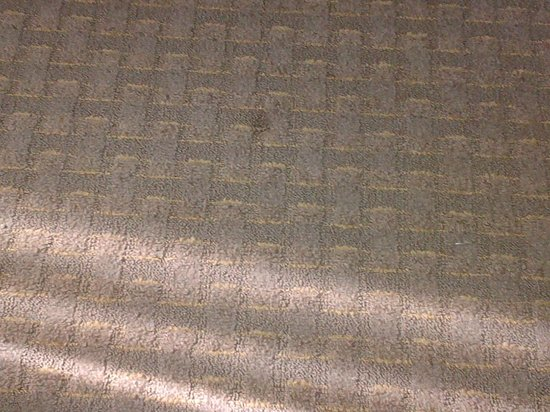 Omni Dallas Hotel at Park West: Spots on Carpet