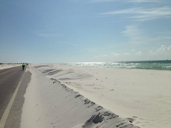 Gulf Islands National Seashore - Florida District: Road into the campground. They actually plow the snow!