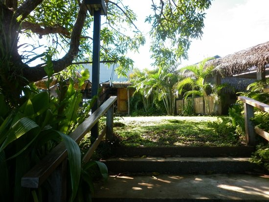 Palmlea Farms Lodge & Bures: Under the Mango tree