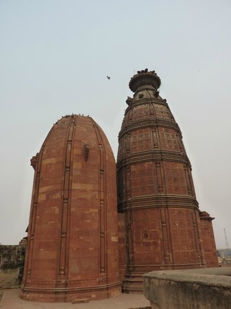 Vrindavan, India: Madan Mohan Temple