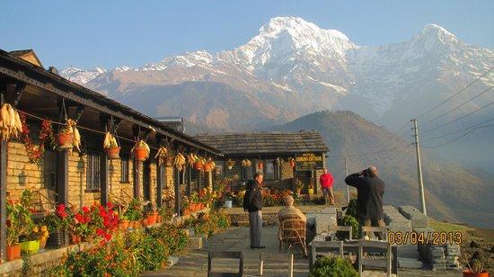 Gurung Cottage Ghandruk