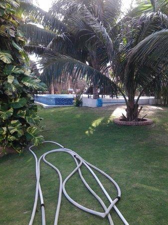 Sunshine Beach Ressort: Pool
