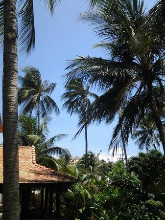 Sunshine Beach Ressort: Grounds