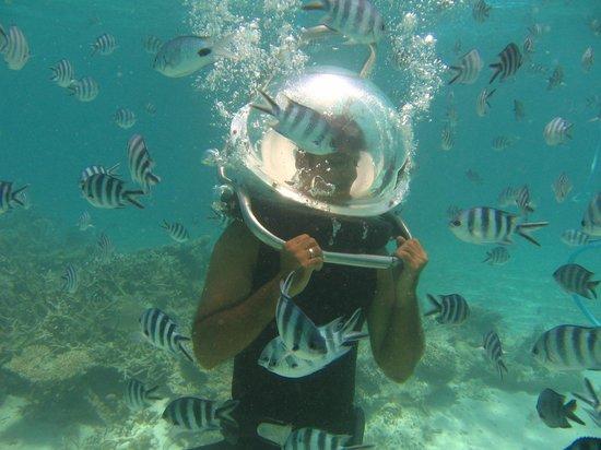Bon Voyage Mauritius: Undersea Walk