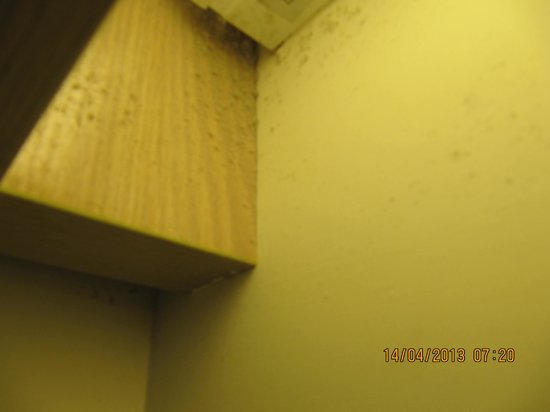 Rambler Oasis Hotel: DUST all over the walls near our Bed