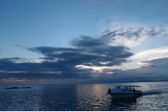 Arung Hayat Sea Adventures : beautiful sunset