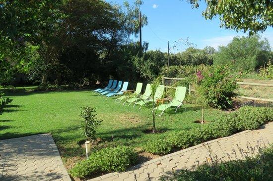 Villa Rustique Bed and Breakfast : De tuin
