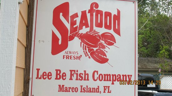 Lee Be Fish Marco Island