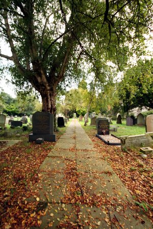 The Graveyard Photo