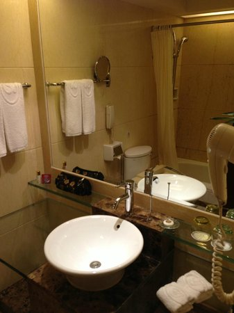 Grand Bay View Hotel: toilet sink area