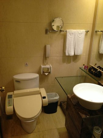 Grand Bay View Hotel: Toilet