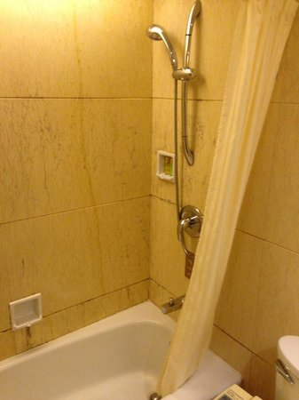 Grand Bay View Hotel: shower area