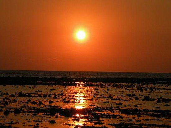 Tropicana Bungalows: Sonnenuntergang
