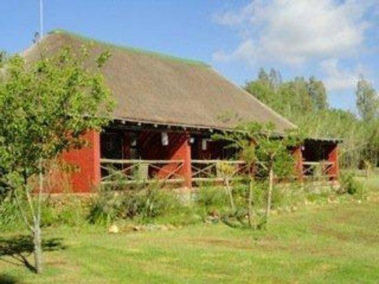 Hakunamatata Lodge: Kya 7 to 10